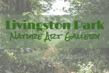 Livingston Park School Nature Art Gallery