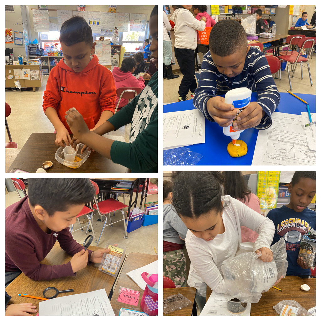Making and observing fossils in fourth grade!